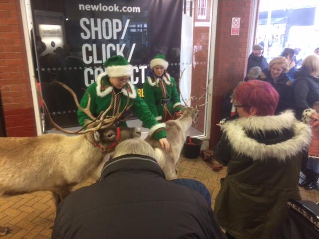 Santa's Elves with Reindeer