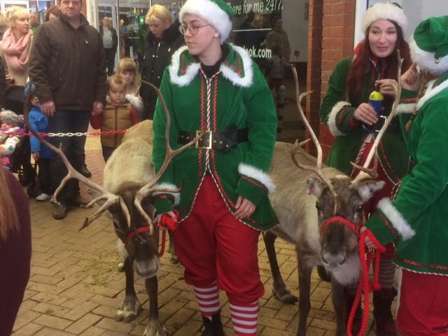 Reindeer and Elves